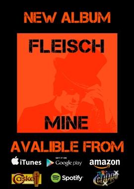 back-of-flyer-mine-album-promo